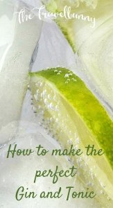 How to make the perfect Gin and Tonic - recipe and tips