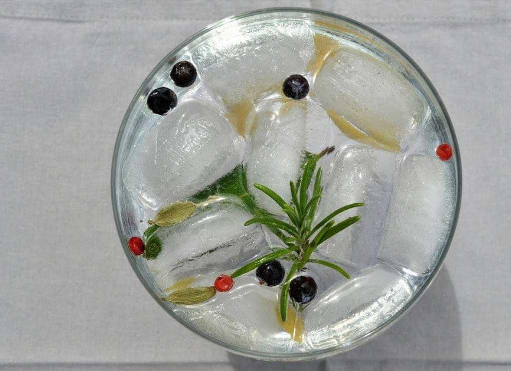gin-and-tonic-botanicals-worldginday