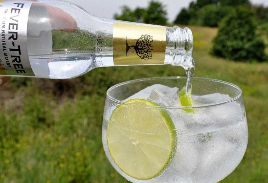 gin-fever-tree-tonic