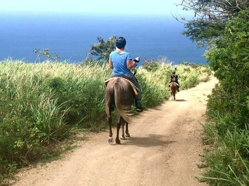 Island Adventures in St Kitts