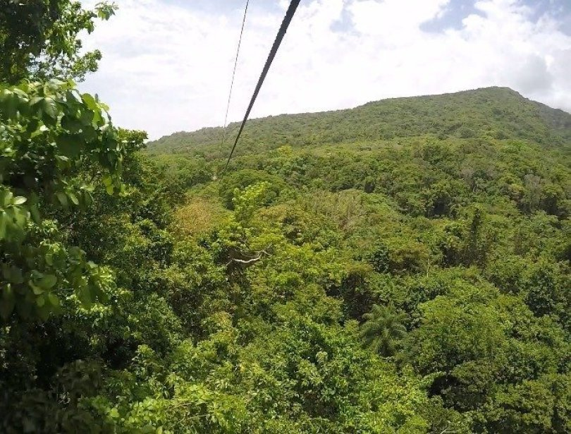 Zip-line-st-kitts