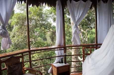 jungle-treehouse-peru
