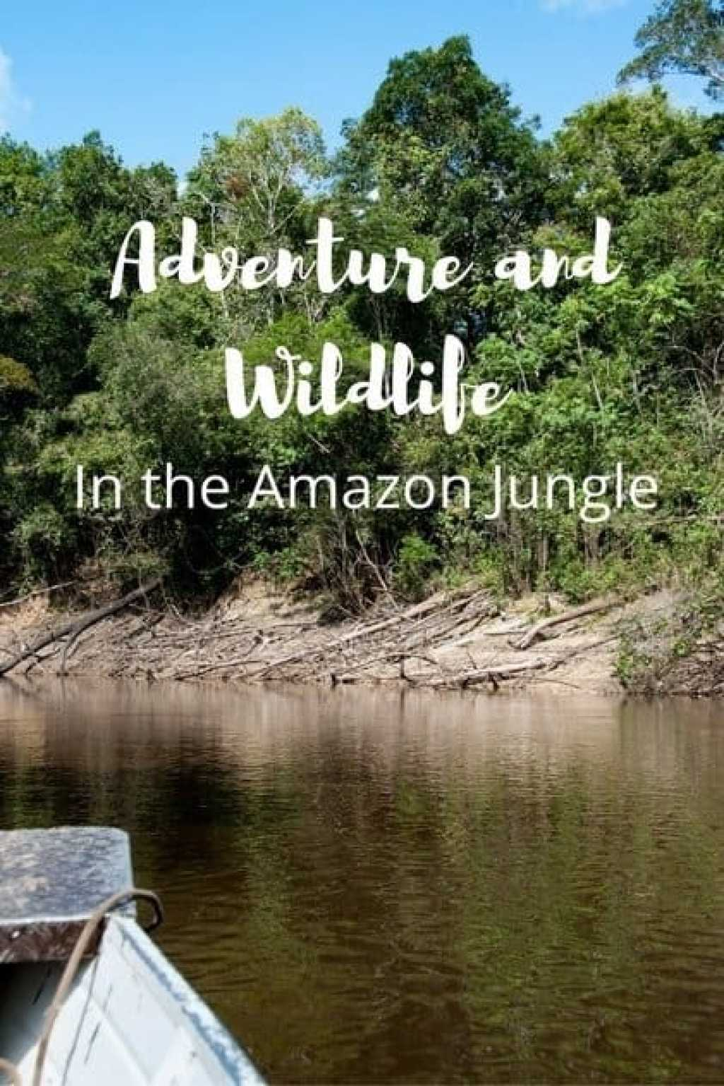 adventure-in-the-amazon-jungle