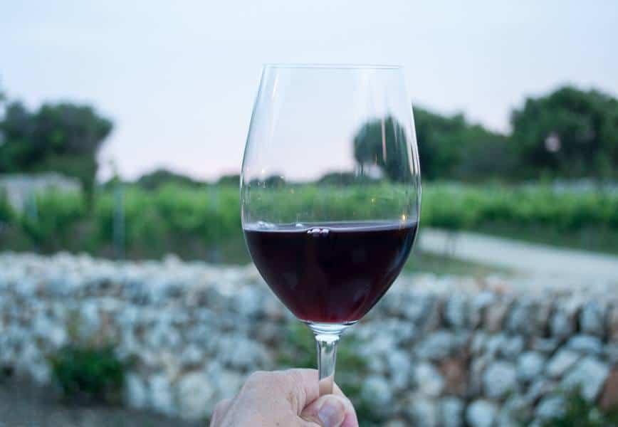 Binifadet winery Menorca