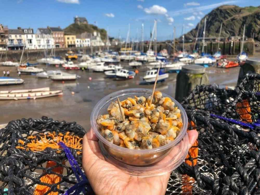 Cockles on the Quay at Ilfracombe