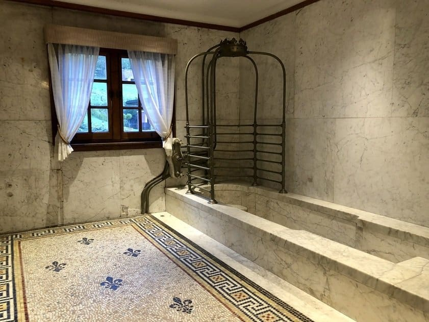 Duc's Bathroom, Wood Norton