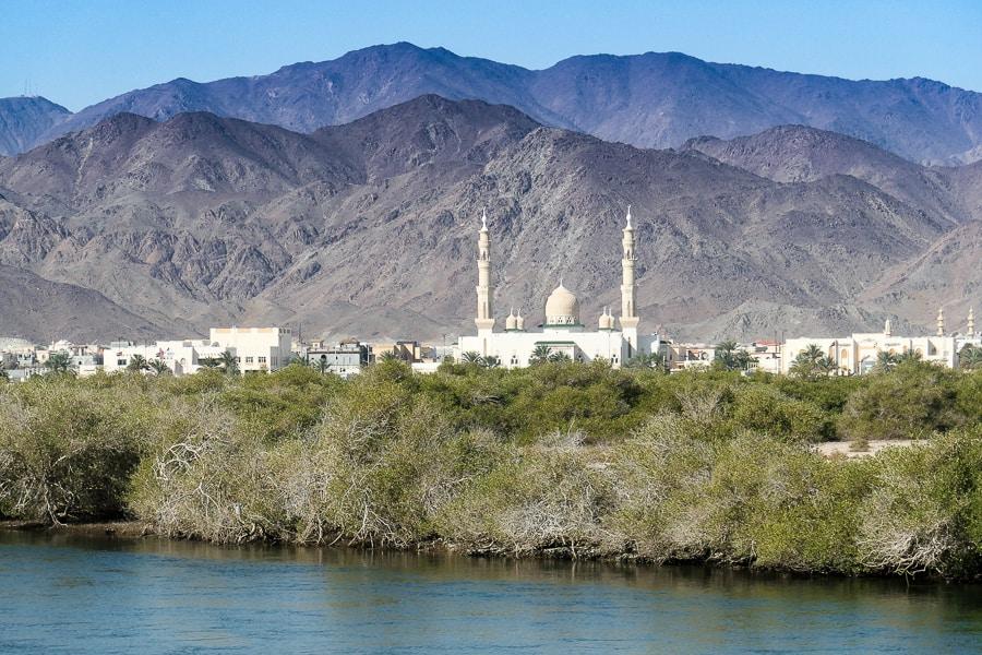 Al Qurm Nature Reserve, Sharjah