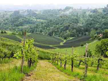 Südsteiermark, Austria | the South Styrian Wine Road