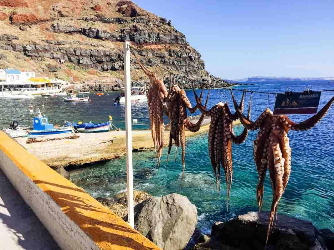 Octopus at Ammoudi Bay, Santorini