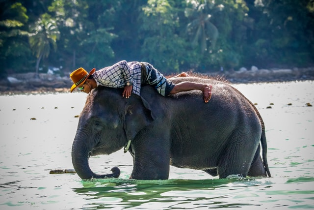 mind-blowing-facts-about-thailand