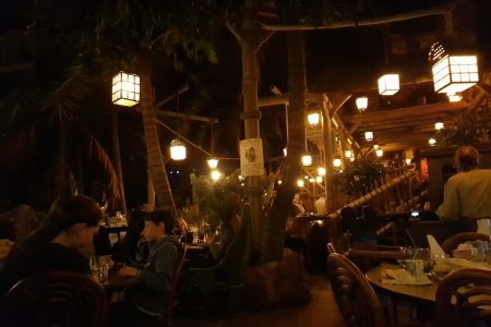 Inside the Disneyland Paris Restaurant, Captain Jack's. Designed like the inside of a jungle with wooden beams, green leaves and hanging lanterns.