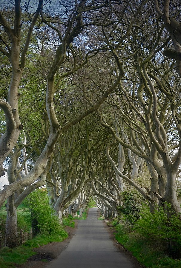 Countries in need: The Kings Road from Game of Thrones in Ireland