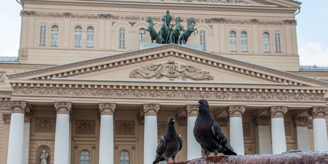 Moskau die schönestem Sehenswürdigkeiten mit Kind Roter Platz Kreml Gum-6