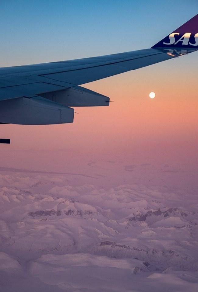 SAS A340 Economy Class Blog Feature Image
