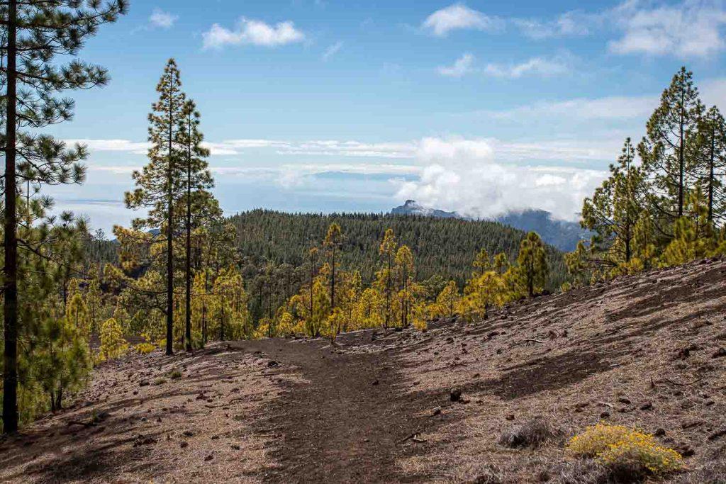Teide Nationalpar Teneriffa wandern-2