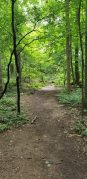 South Mountain Fairy Trail
