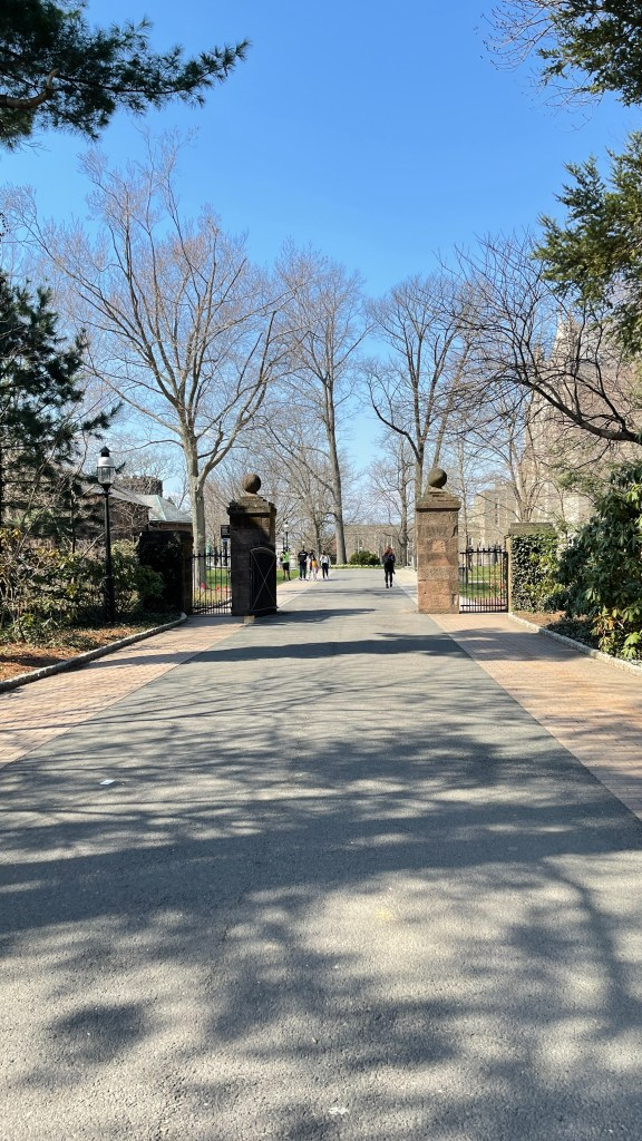 Princeton University entrance