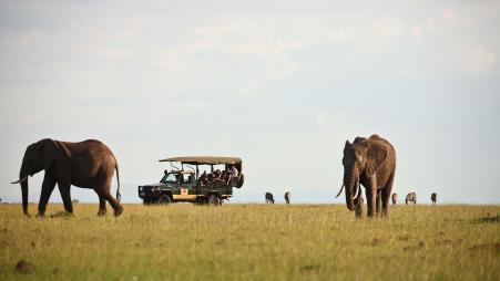 A game drive at Elephant Pepper Camp in Kenya © Elewana