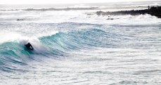 A local is catching some waves at Brennecke's Beach, which is just down the street