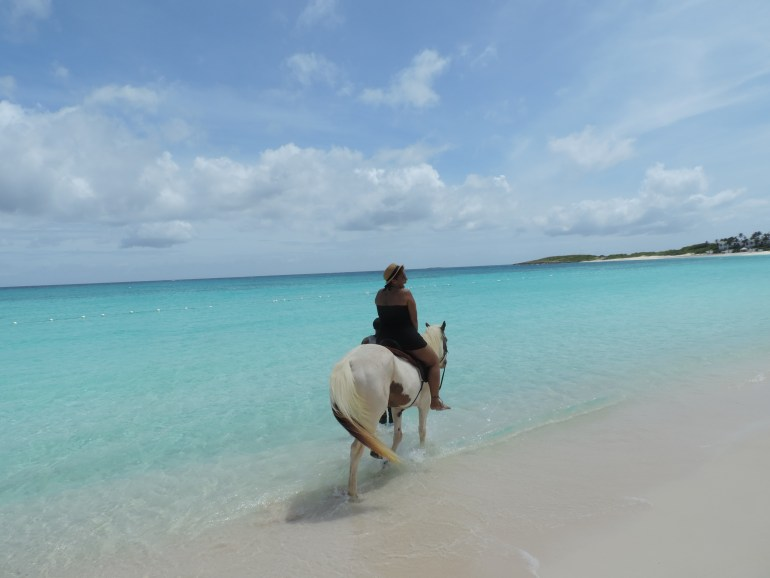 Just an island girl and her horse