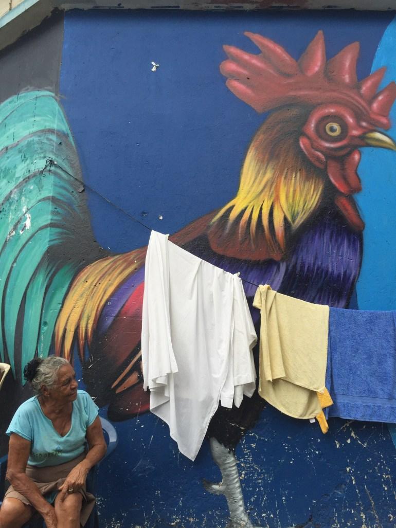 Graffiti of Rooster in Santa Barbara, Santo Domingo