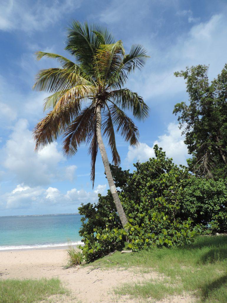 St. Maarten's best 5 beaches