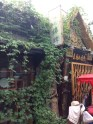 Another vine-draped hutong shot.