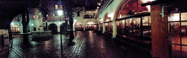 The wife and I were able to enjoy a few moments in the Hofbrauhaus's outdoor beer garden.