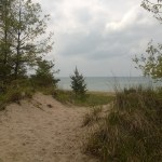 Day at the Indiana Dunes