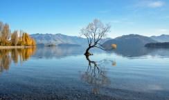 2016 04 28 Lake Wanaka Sunrise (109)
