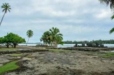 2016 05 19 FP Cruise - Huahine Island Tour (110)