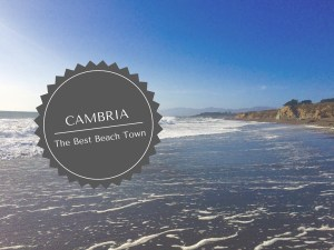 Why Cambria is the Best Beach Town