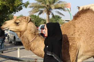 My new best friend the camel - Dubai, UAE
