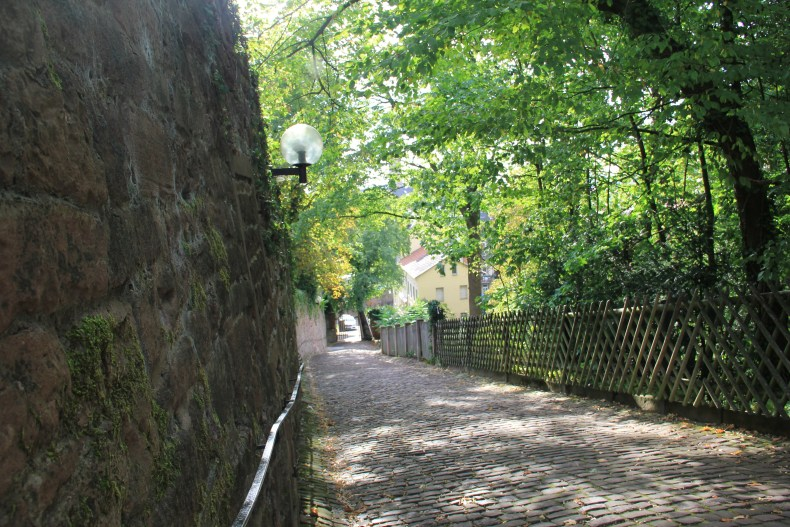 The walk to the castle is a climb but a journey unlike any other! - Heidelberg, Germany