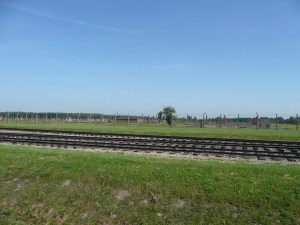 Hundreds and hundreds of chimneys still stand as a solemn reminder - Auschwitz, Poland