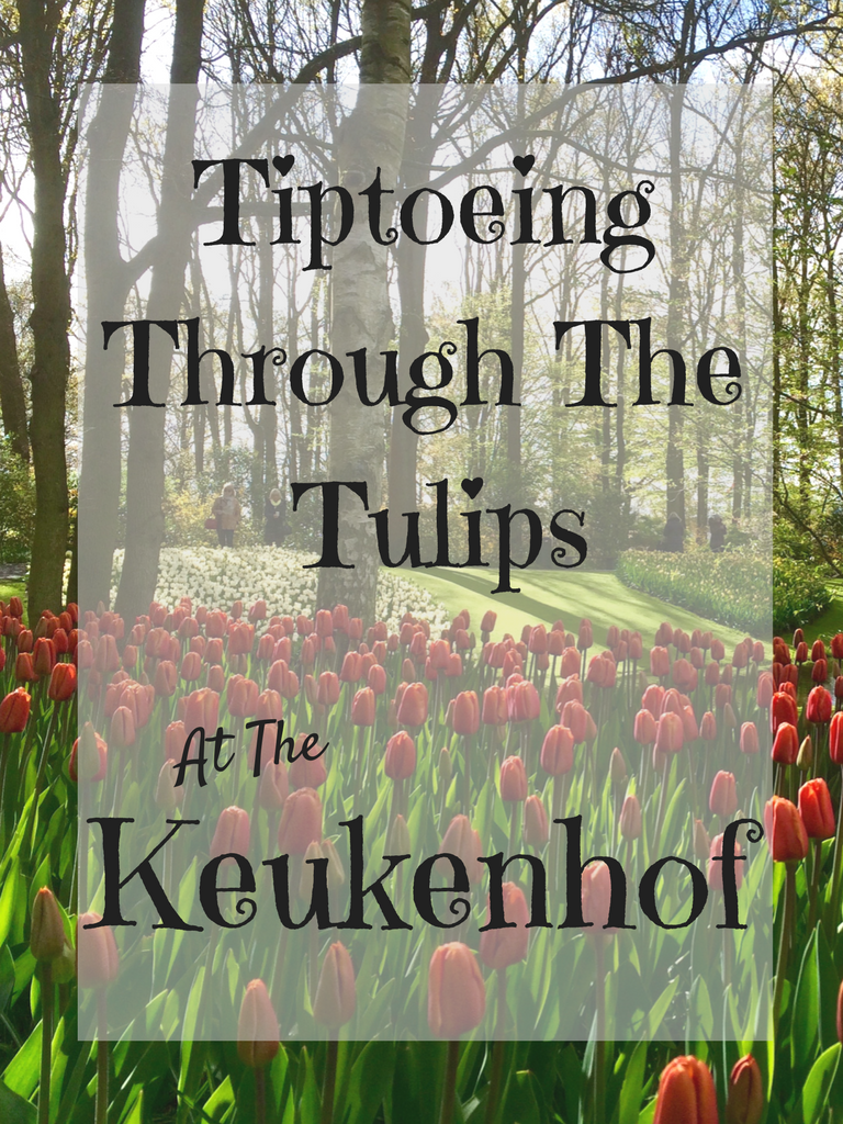 Tiptoeing Through the Tulips at the Keukenhof - The Traveling Storygirl