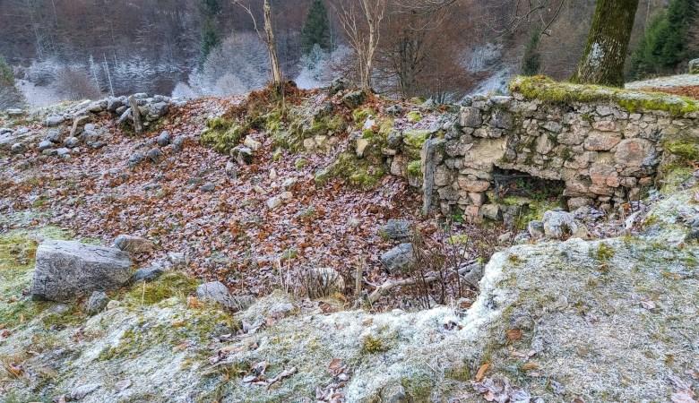Trenches, Sentiero Dei Grandi Alberi, Vicenza Italy 