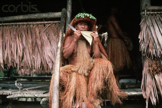 Guaymi Man of Peru in Grass Skirt Playing Panpipes
