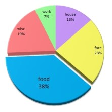 pie chart expense report