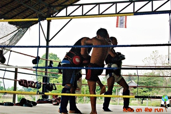 muya thai training in Thailand