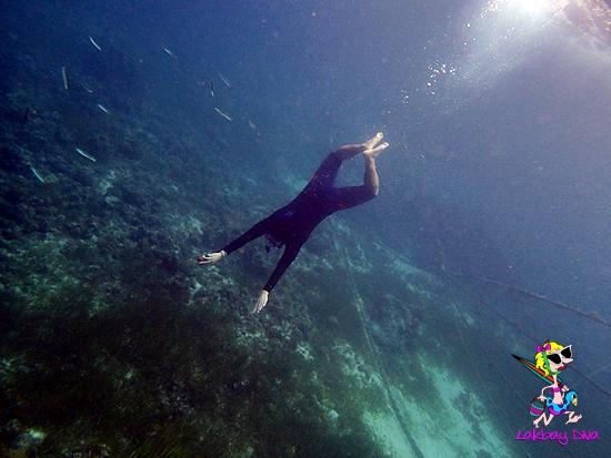 freediving at Mactan Cebu