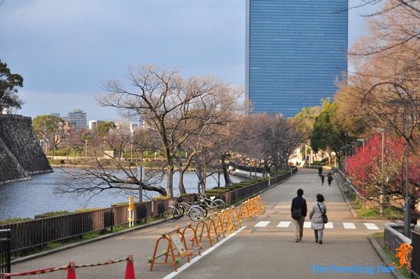 Osaka Plum Grove Garden