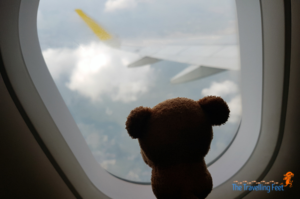 Magnet flying with Cebu Pacific