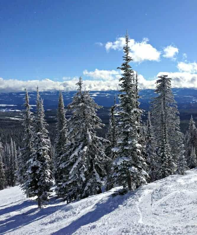 The Big White Ski Resort tagline says it all: It's the Snow. But it's so much more than that for travelling families looking for winter holiday fun. Best tips for Big White with kids.