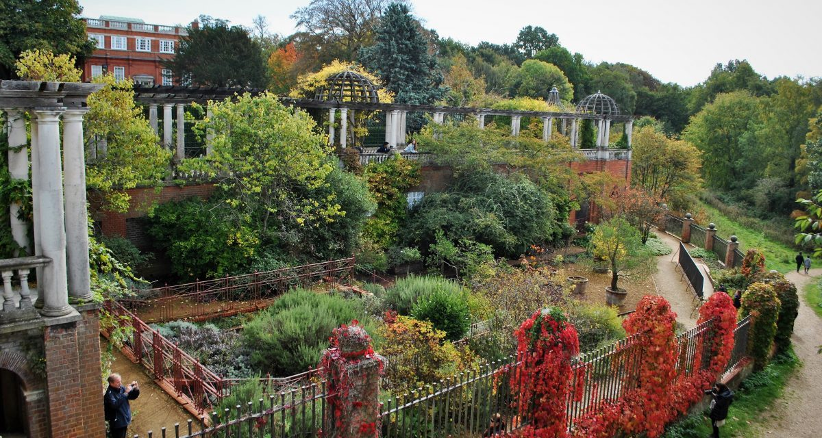 Wandering around Hampstead