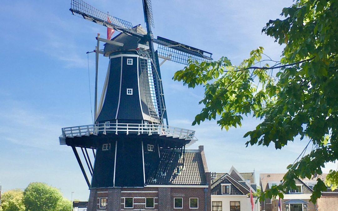Cosa visitare nei dintorni di Amsterdam: Haarlem