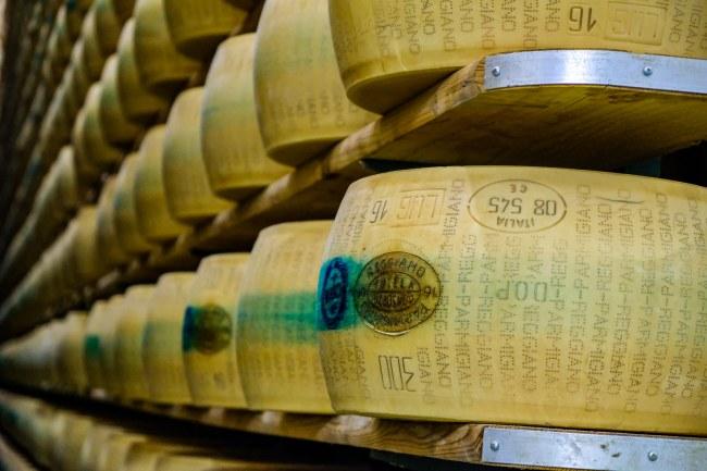 Exploring Italy's famous food region - Parmigiano Reggiano wheels of cheese