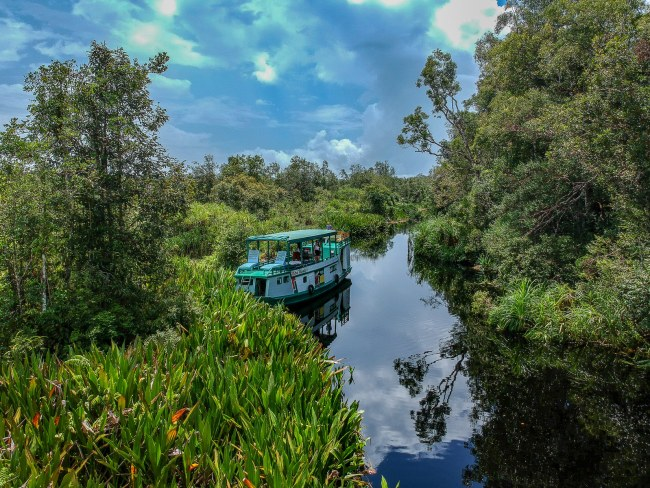 Visiting orangutans in Borneo, Indonesia - staying on board a kelotok boat in Tanjung Puting
