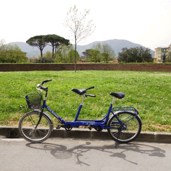 Perfect Day   Lucca   The Travel Medley