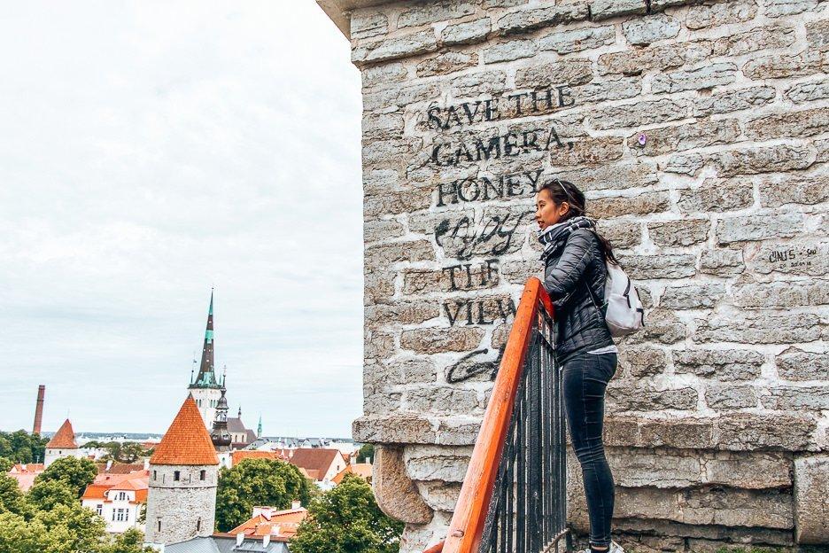 Save the Camera Honey, Enjoy the view graffiti art, Tallinn